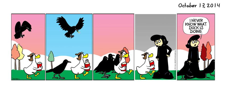Ravens (10172014)