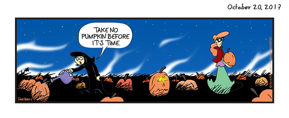 Take No Pumpkin Before It's Time (10202017)