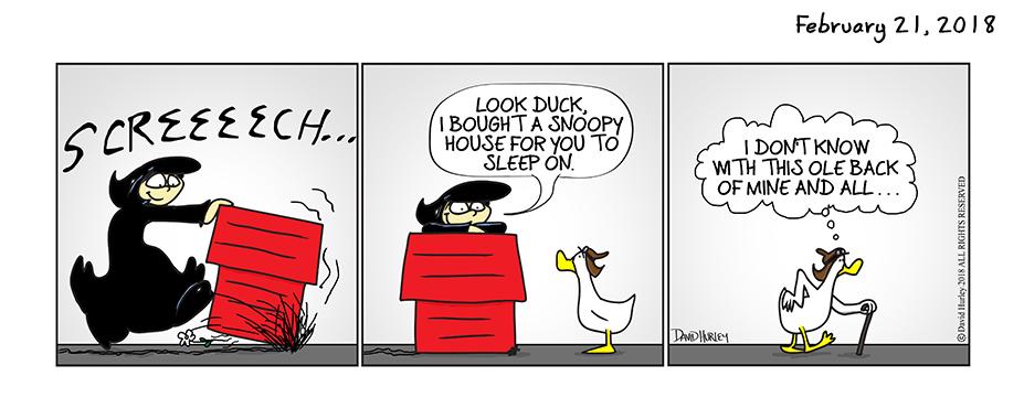 Dog House (02212018)