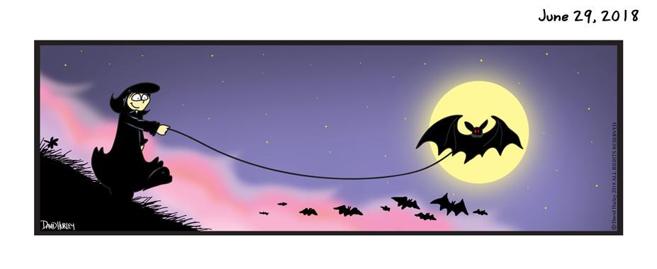 Bat Walk (06292018)