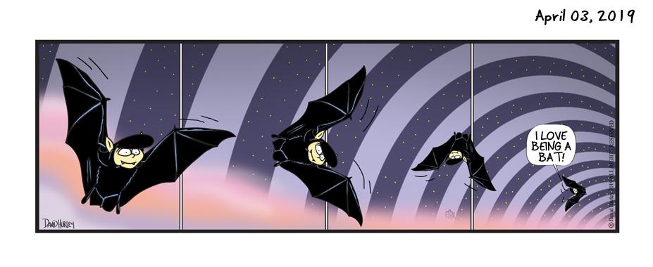 Bat Spin (04032019)