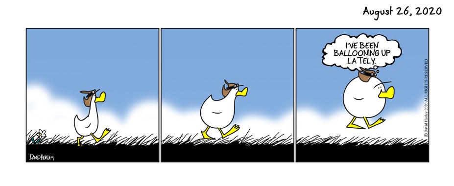 Balloon Duck (08262020)
