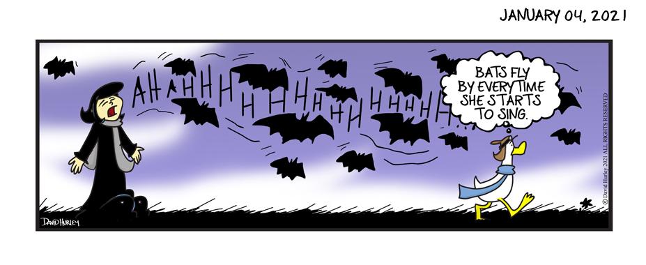Bat Call (01042021)