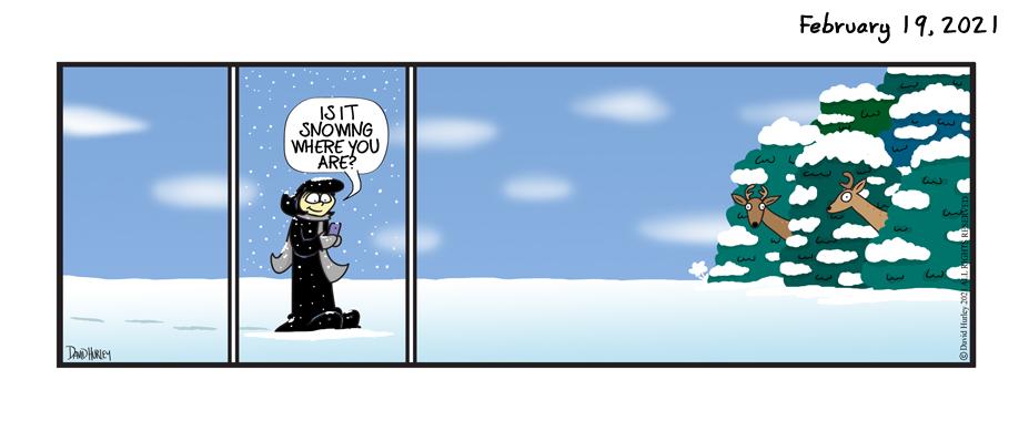Snow Text (02192021)