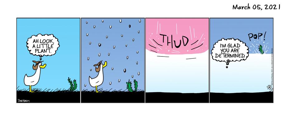 Thud (03052021)